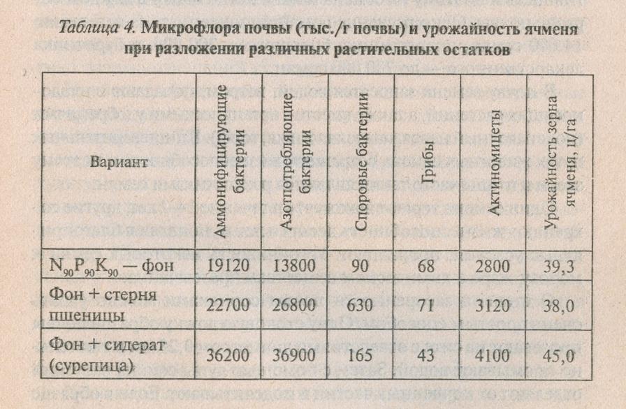 Микрофлора почвы