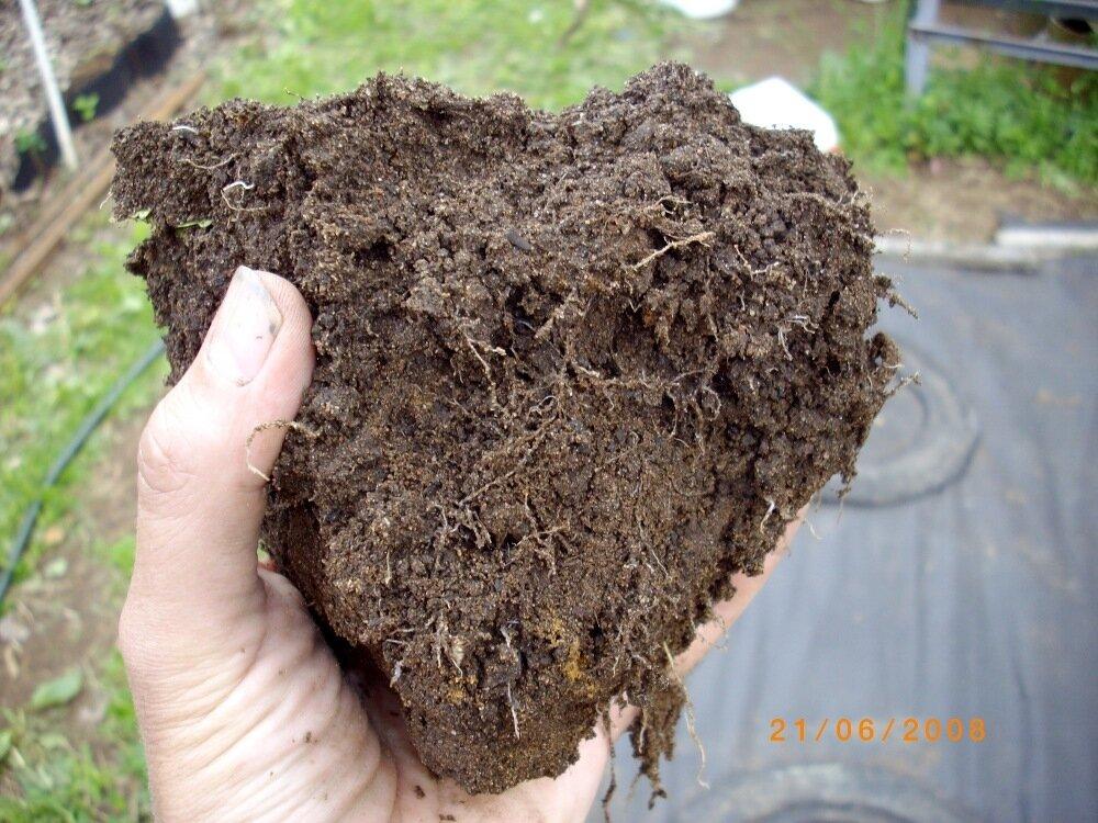 Про почвы
