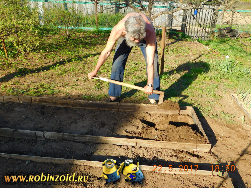 Обработка почвы и удобрение