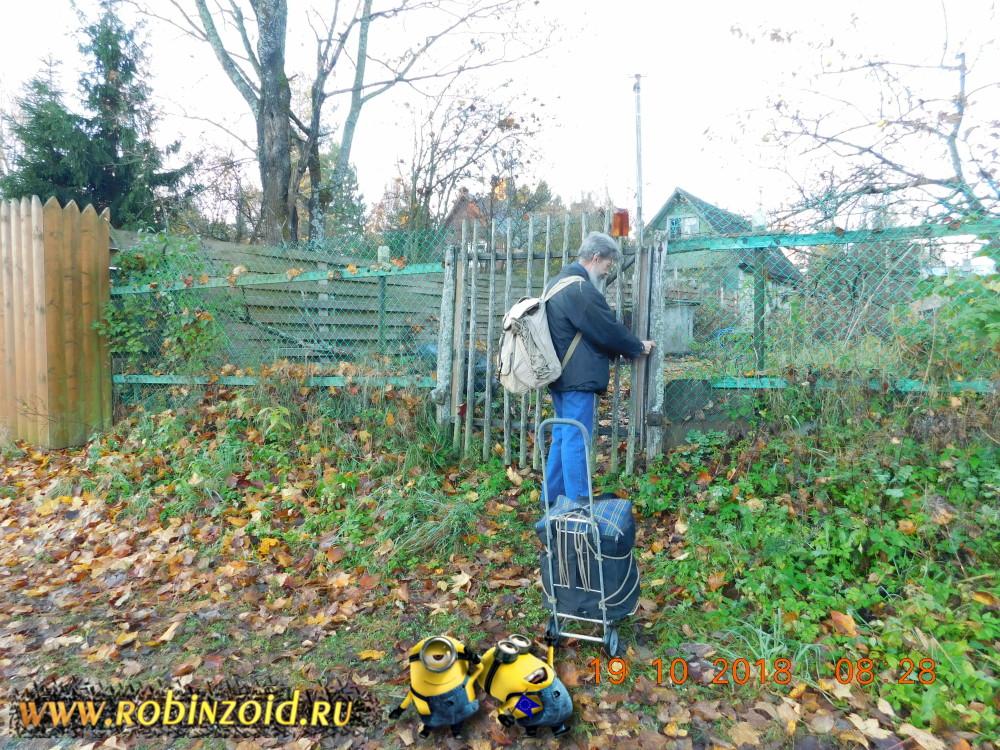 Подкормки растений на основе компостов