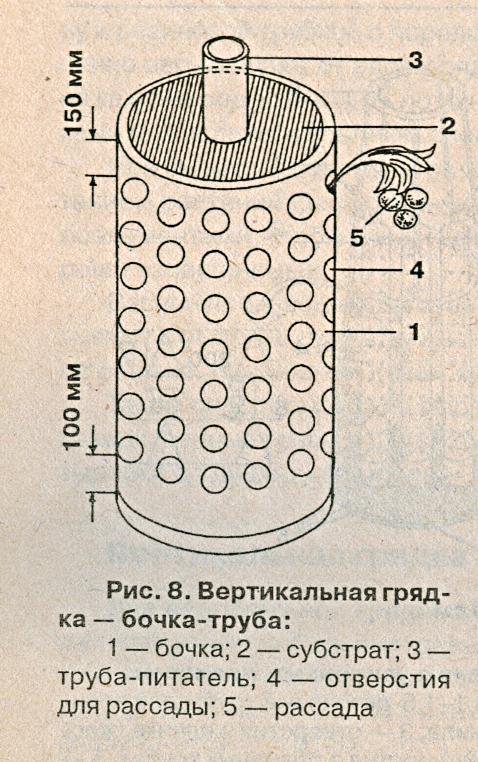 Вертикальная грядка бочка-труба