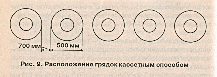 Расположение грядок кассетным способом